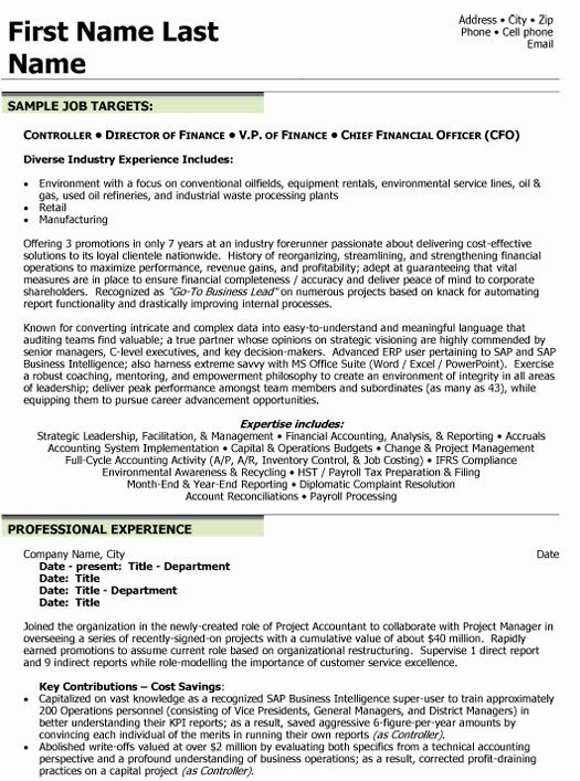 Finance Director Resume Examples Unique Top Finance Resume Templates Samples In 2020 Finance Resume Examples Finance Career