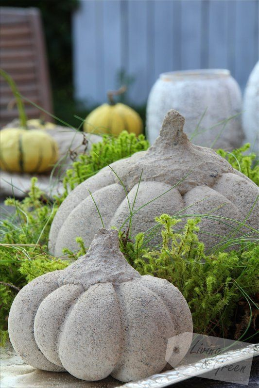 Hello pumpkin beton k rbis diy k rbis aus beton for Schuhschrank aus weinkisten