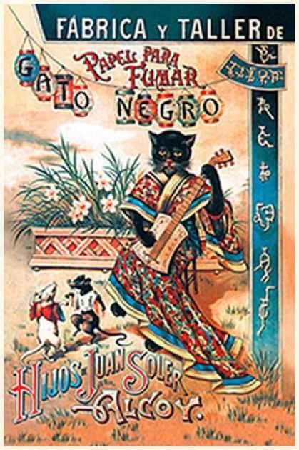 Black Cat Spanish