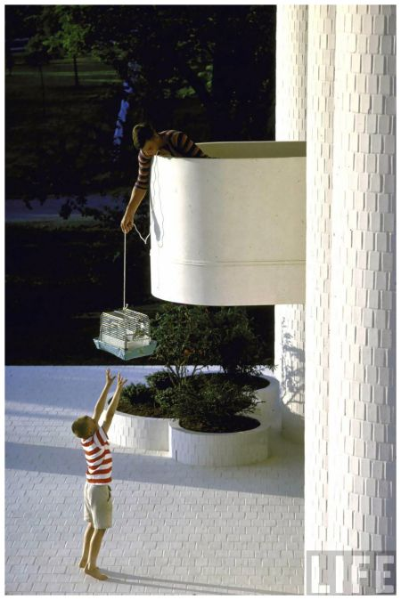 Photo John Dominis Home of Mr. and Mrs. John W. Wallace designed by architect Paul Rudolph. Two boys relay a family pet fr. the balcony 1965: