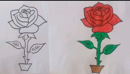 How To Draw Rose Step By Step Roses Drawing Drawings Rose Step By Step
