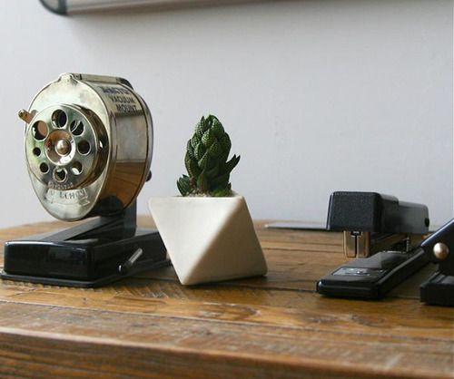Desk plant