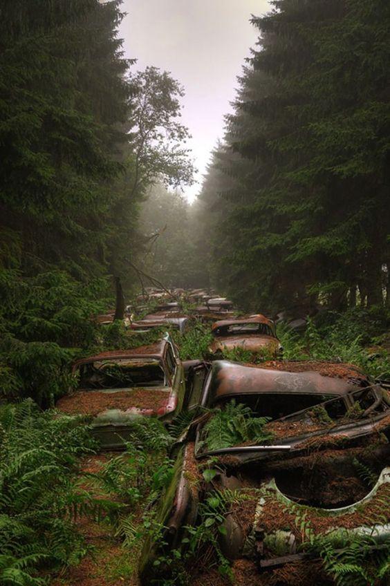 """✖ """"cimetière de voitures de Châtillon"""" / Crédit Image : Rosanne de Lange"""