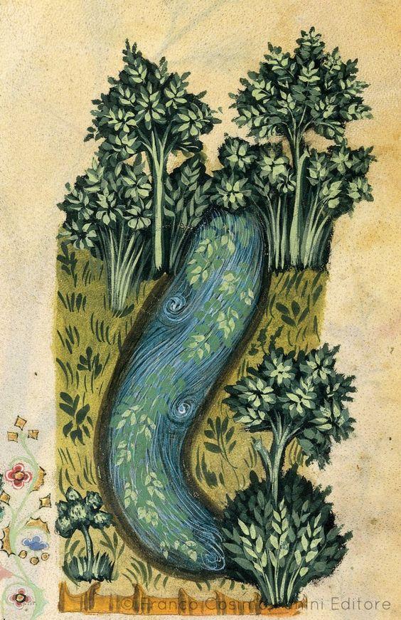 """StratioteDal codice """"Historia Plantarum"""", fine XIV secolo:"""