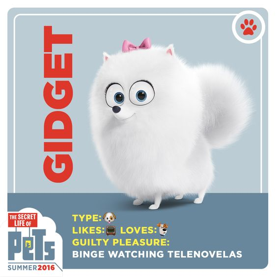 Meet Gidget. What do you like to binge watch? The Secret