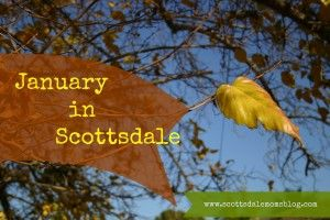 January in Scottsdale - Oh Yeah, This is why we live here!