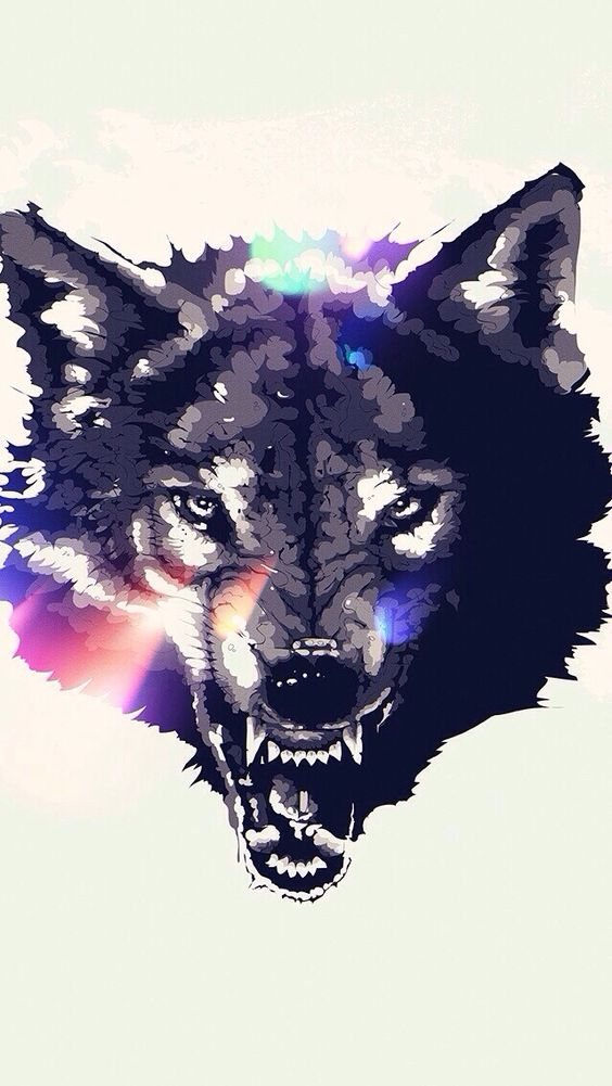 wolf iphone wallpaper iphone wallpapers pinterest