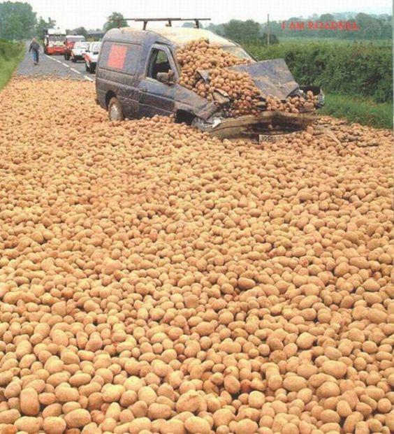 Ao vencedor as batatas.