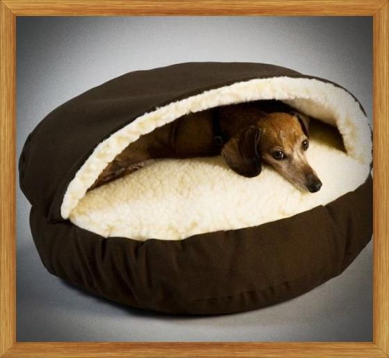 Cheapest Dog Beds For Both Small Large Dogs This One Is For Sharing Large Dog Bedding Bean Dog Beds Or Even Dog Sleeping Bag Pet Dogs Puppies Sleeping Dogs