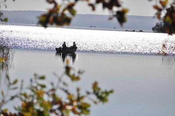 http://2-stefan-pettersson.artistwebsites.com/featured/fishing-on-the-lake-stefan-pettersson.html