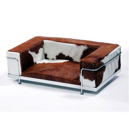 Le Corbusier Dog Sofa Training