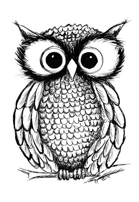 I love this owl illustration would make a fantastic for Draw the owl
