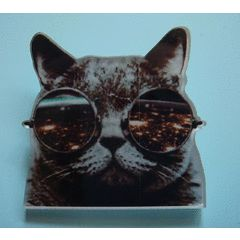 Cool Cat Brooch / Badge for R19.00
