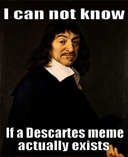 René Descartes Critical Essays