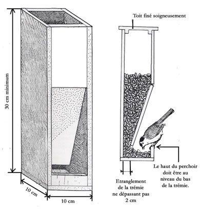 Construire une maison oiseaux ecologie et for Construire une maison plan