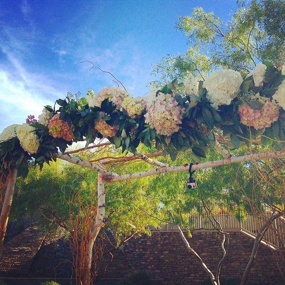 Birch arch with hydrangea and garland. #EnchantedFloristLV