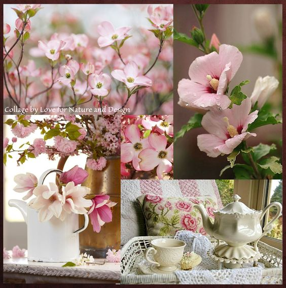 Pinks ~ love for nature and design