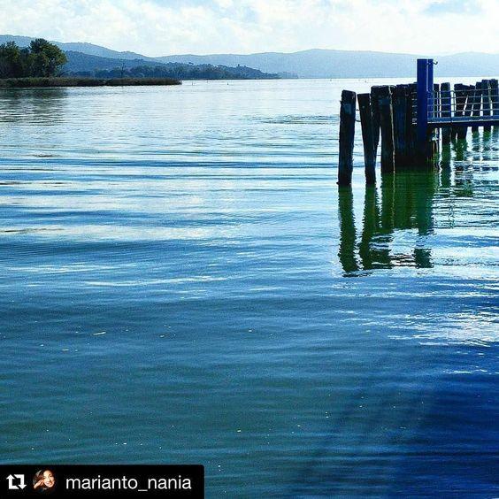 #Repost @marianto_nania  L'incantesimo del lago #lago #trasimeno #incanto #trasimenolake #igersumbria #instagram #dafareinumbria by trasimeno_lake