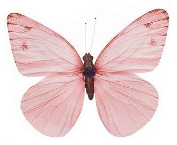 Salmon Butterfly - 50cm