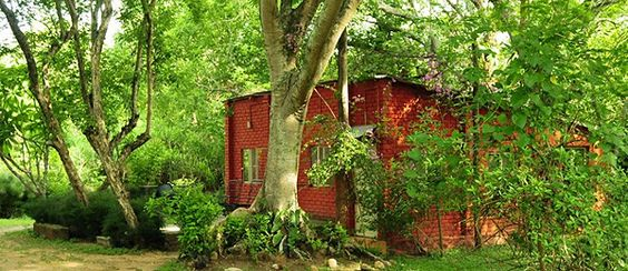 Our #travellicious Weekend Getaway in Bamboo Banks - Masinagudi  for 2 Nights/ 3 Days @ just Rs. 4,499/- per adult.