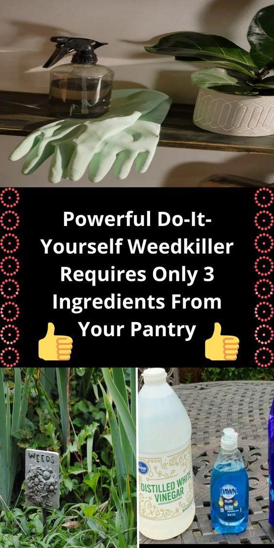 ca51f70751379e9aef8fecd126d49d91 - The Best Weed Killer For Gardens