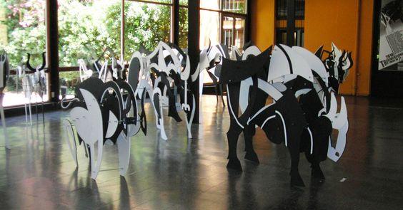 Other Bulls