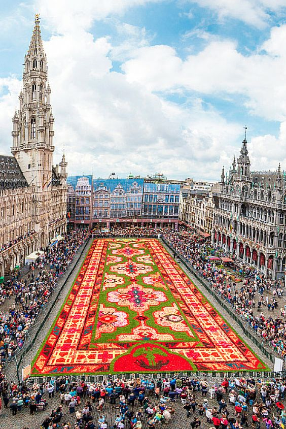 This amazing flower carpet is set up every year in Brussels, Belgium