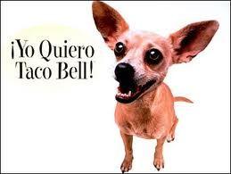 Yo quiero (I want) Taco Bell. tú quieres, ella quiere, nosotros queremos, ell@s quieren  'querer'=to want.