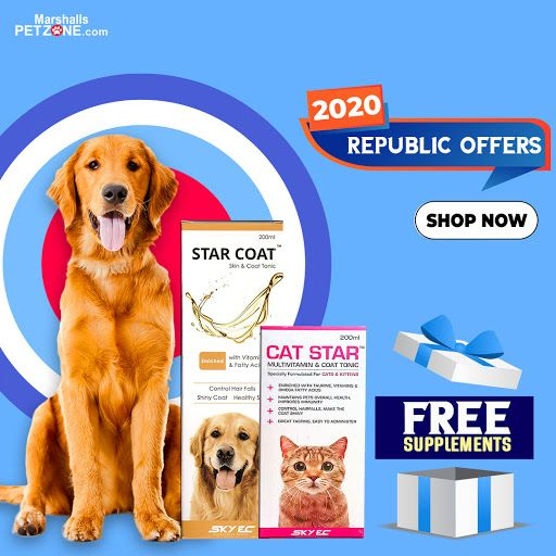 Get A Month S Worth Of Supplements On Bills Of Rs 2020 And Above Satisfy Your Pet Needs And Also Ensure That It Stays Healthy Sh In 2020 Buy Pets Food Animals Pets