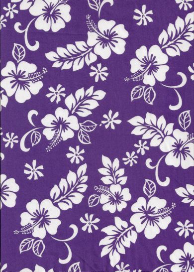 essay on motifs from purple hibiscus The purple hibiscus is the first novel of the writer chimanda ngozi adichie the  novel was published in 2003, it got a lot of attention in terms of.