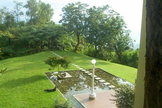 jardin avec des pas japonais et pelouse bassin jardin spacieux espace ...