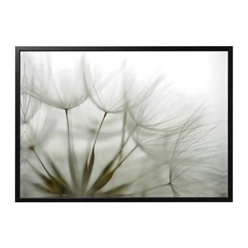 BjÖrksta Picture And Frame Dandelion