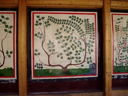 Paintings of the trees of Tibetan medicine, Labrang monastery, Amdo.