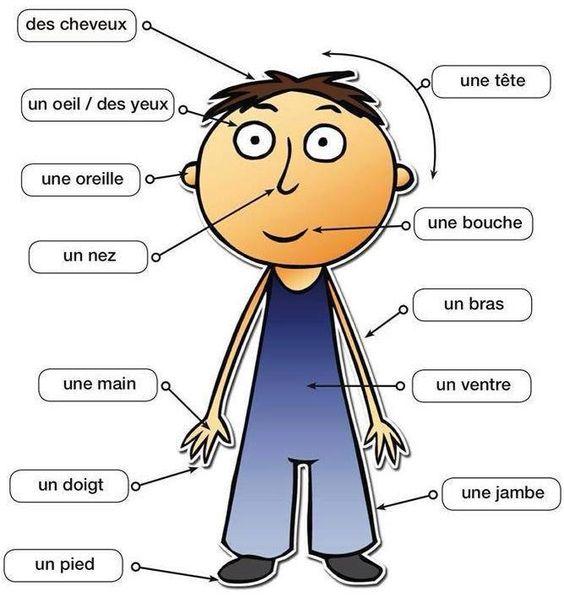 Traduire rencontre humaine en anglais