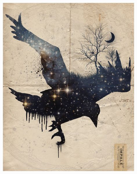 "The darkness carries me through my turbulent thoughts; here, no light will reveal my movement. ""Space Raven"" by Impale Design:"