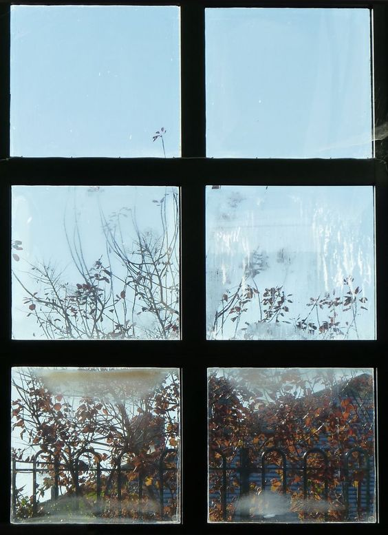 6 December 2014: Through the library window.