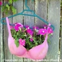 Unusual Containers for Gardening   Container Gardening with KatG cubit: UNUSUAL ITEMS USED FOR CONTAINERS ...
