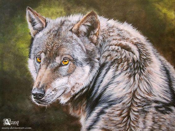 Wolf's turn by Azany on DeviantArt