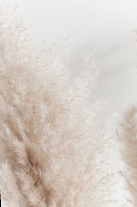 Inspirations Blanc D Hiver Moodboard Carnet Sauvage Blog Mode Lille 1 Jpg En 2020 Esthetique Blanc Fond D Ecran Telephone Fond D Ecran Colore