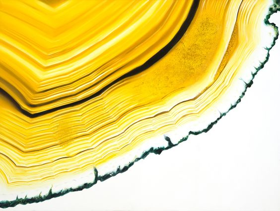 Agate Section Yellow