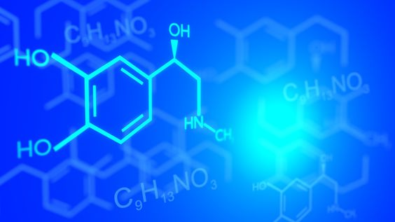 Tools, Probes, and Drug Compounds