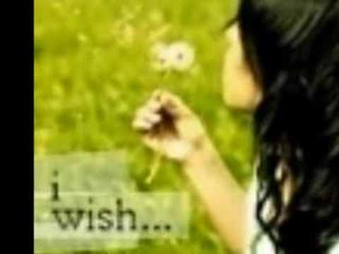 make a wish on a dandylion