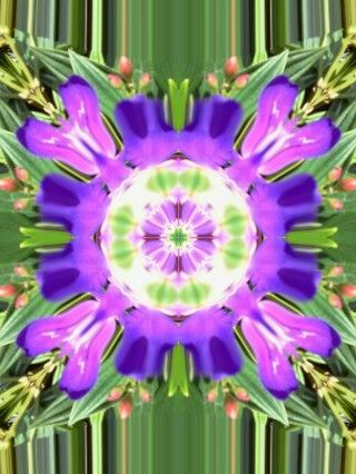 got healing? Reiki Spiritual Energy Healing - Healing Art Forms