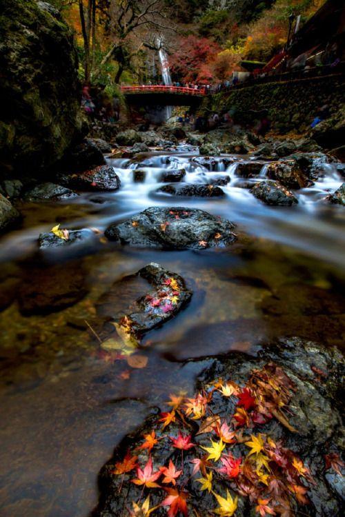 Tellement belle notre planète ! http://www.15heures.com/photos/LeGX #OMG