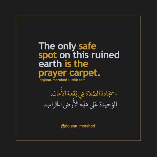 سجادة الصلاة هي بقعة الأمان الوحيدة على هذه الأرض الخراب Inspirational Quotes With Images Wisdom Quotes Life Quran Quotes Love