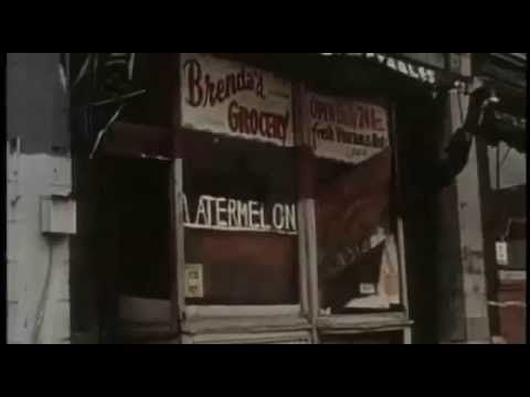 chicago blues documentary ( 5)