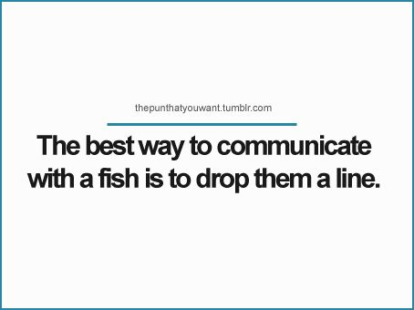 fish on the line
