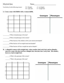 Worksheets Monohybrid And Dihybrid Crosses Worksheet the ojays squares and factors on pinterest this is a short quiz dihybrid or two factor genetics cross there are
