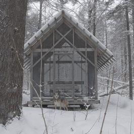 Fern House - Robert Swinburne, Vermont architect