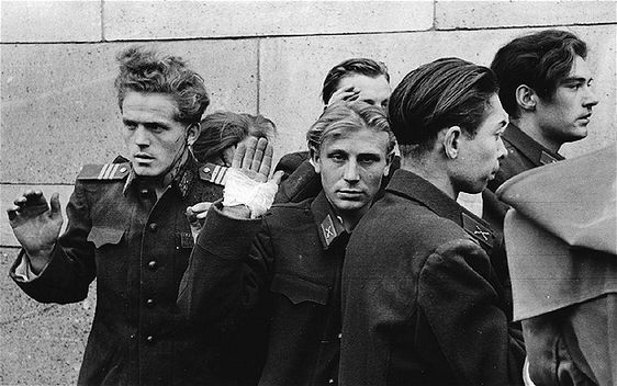 the hungarian revolution of 1956 essay 5 5 such as the 1953 berlin uprising, the rebellion of poznan in june 1956, the october events in poland, the hungarian revolution and the suez crisis on the other hand.